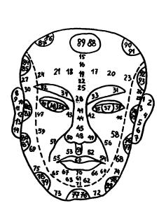 позиции лица