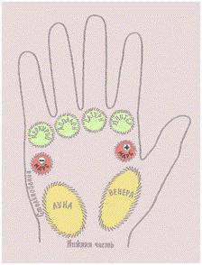 рука 1